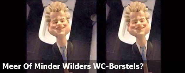 Meer Of Minder Wilders WC-Borstels?