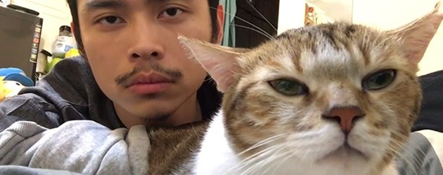 De Internet Sensatie Die Hotline Bling Cat Heet