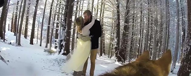 Koppel Laat Het Huwelijk Door De Hond Filmen
