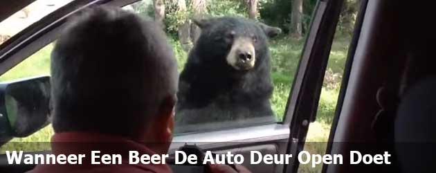 Wanneer Een Beer De Auto Deur Open Doet