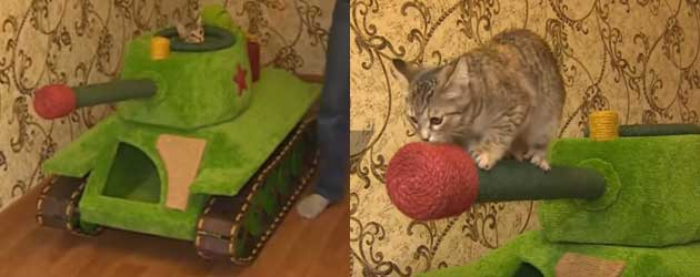 Only In Russia: Een Kat Met Een Eigen Tank