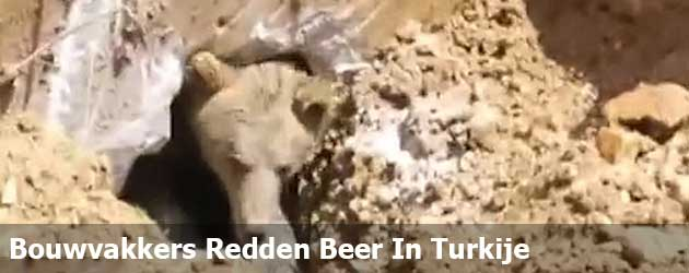 Bouwvakkers Redden Beer In Turkije