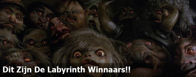 Dit Zijn De Labyrinth Winnaars!!