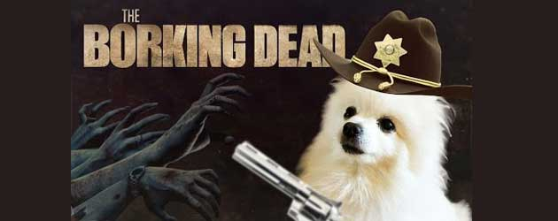 The Walking Dead Met Honden!!!!