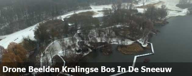 Drone Beelden Rotterdam, Kralingse Bos In De Sneeuw