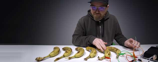 Kan Je Op Een Tros Bananen Muziek Maken?