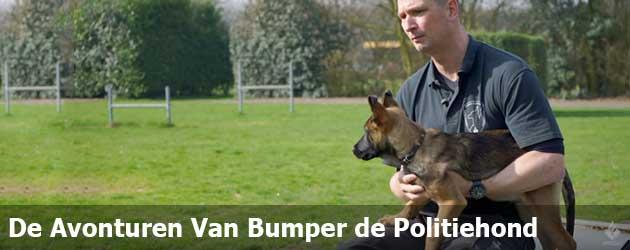 Alle avonturen van bumper de Rotterdamse politiehond keurig op een rijtje