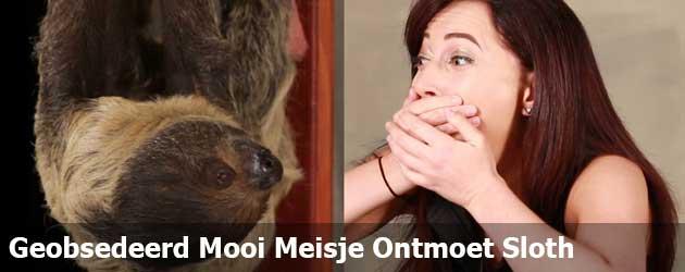 Geobsedeerd Mooi Meisje Ontmoet Sloth