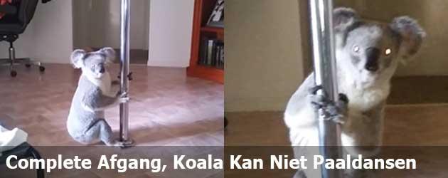 Complete Afgang; Koala Kan Niet Paaldansen
