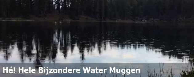 Hé! Hele Bijzondere Water Muggen