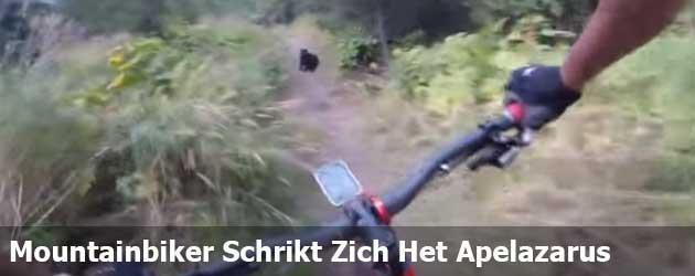 Mountainbiker Schrikt Zich Het Apelazarus