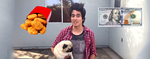 Hond Moet Kiezen Tussen 100 $ En Mcnuggets