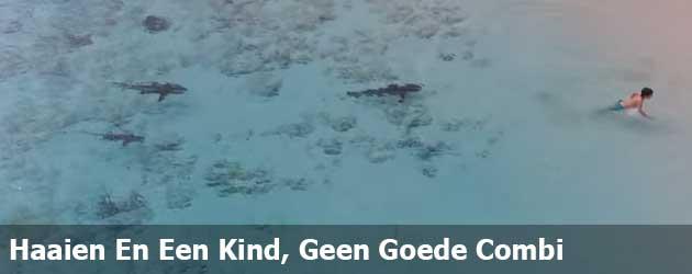 Haaien En Een Kind, Geen Goede Combi