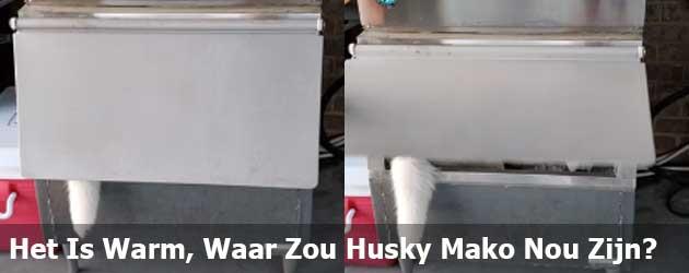 Het Is Warm, Waar Zou Husky Mako Nou Zijn?